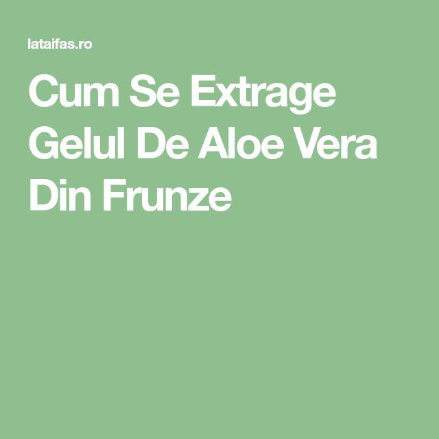 Cum Se Extrage Gelul De Aloe Vera Din Frunze