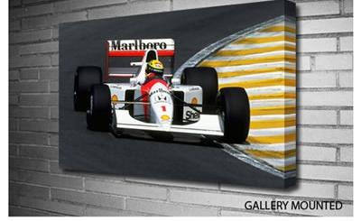 Arton Senna Formula 1 by Mohka from only 19.99. http://www.mohka.co.uk/products/ARTON-SENNA-FORMULA-1-363863.aspx