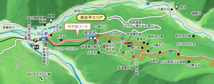 材木坂コース|立山黒部アルペンルート