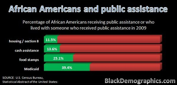 11.5% of African Americans live in government housing or section 8 while 13.6% receive cash assistance and just over 25% receive other benefits like food stamps. This chart shows all the assistance given in 2009,the largest benefit was Medicaid which mostly consists of children.