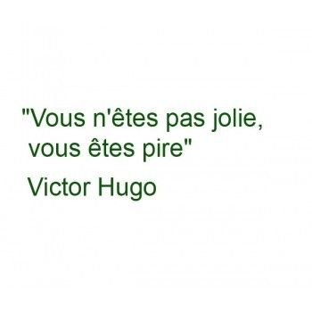 Victor Hugo You are not pretty, you are worse (!)