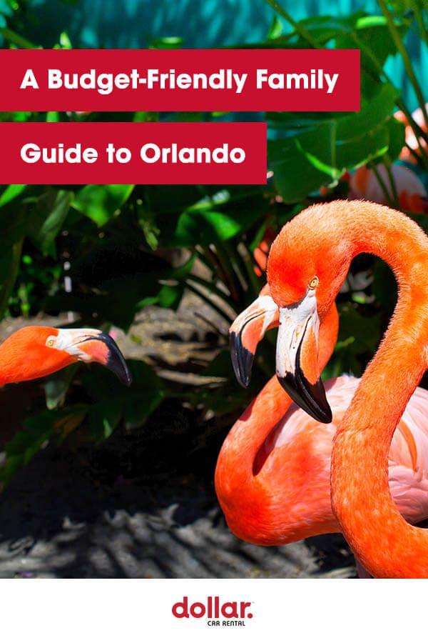 A Budget Friendly Family Guide To Orlando Orlando Orlando Theme Parks Visit Orlando