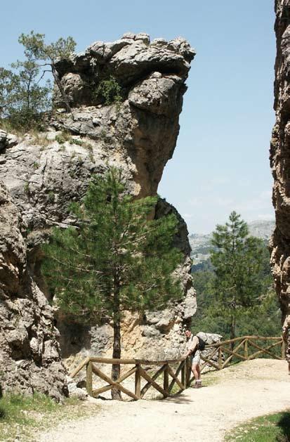 Senderismo en la Sierra de Cazorla. En la imagen, camino de Valdeazores. Reserva de la Biosfera Sierras de Cazorla, Segura y las Villas (Copyright archivo Entropía www.entropía.es) Os invitamos a visitar:   http://revista.destinosur.com/pdf57/biosfera.pdf http://turismohumano.com/ www.marcaparquenatural.com