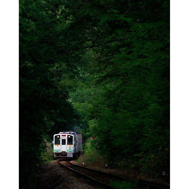 【mura_shuu】さんのInstagramをピンしています。 《森の中をのんびりと #福島県 #南会津 #会津鉄道 #ローカル線 #気動車 #電車 #鉄道 #鉄道風景 #森林 #緑 #森の中 #ペンタックス #ペンタックス倶楽部 #ペンタックス党 #ペンタックスks1 #pentax #愛しのpentax倶楽部 #pentaxks1》