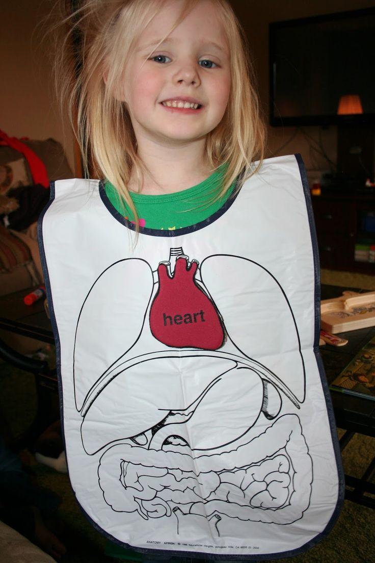 Montessori Preschool Human Body Week