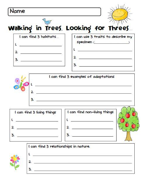 printable nature walk worksheet free outdoor education pinterest. Black Bedroom Furniture Sets. Home Design Ideas