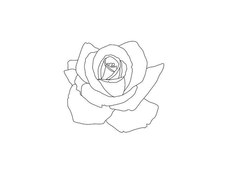 Tattoo Outline Ideas Small Rose Tattoo Rose Drawing Tattoo Rose Tattoos On Wrist