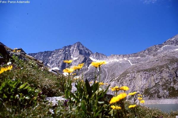 Cima Plem dal Lago Benedetto.