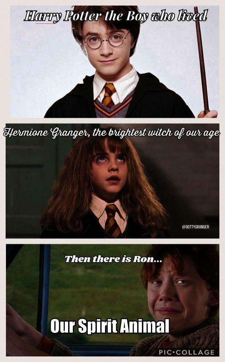 Harrypottermemes Harry Potter Quiz Harry Potter Spells Harry Potter Characters