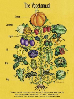 A really cool diagram of seasonal vegetables and fruits.
