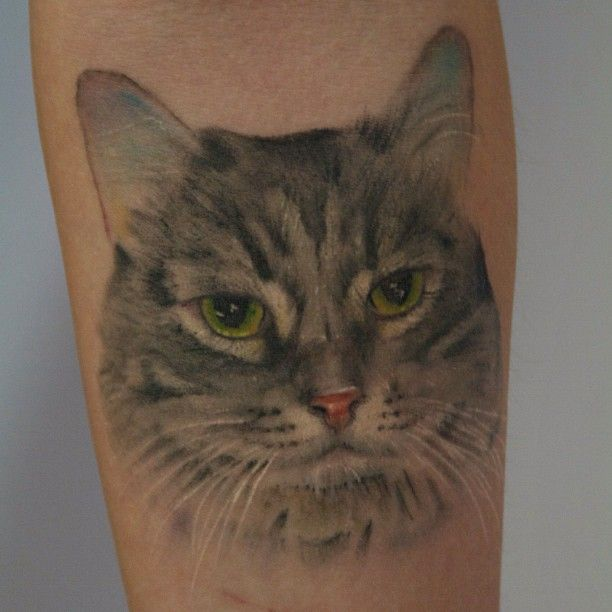 "55 Likes, 5 Comments - ☠Steven Shippey☠ (@voodootaddoo) on Instagram: ""Finally got a photo of this fully healed pussy #tattoo #pussy #cat #kitten"""