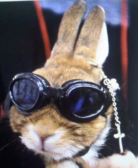 1000 images about gothic easter on pinterest for Call the easter bunny phone number