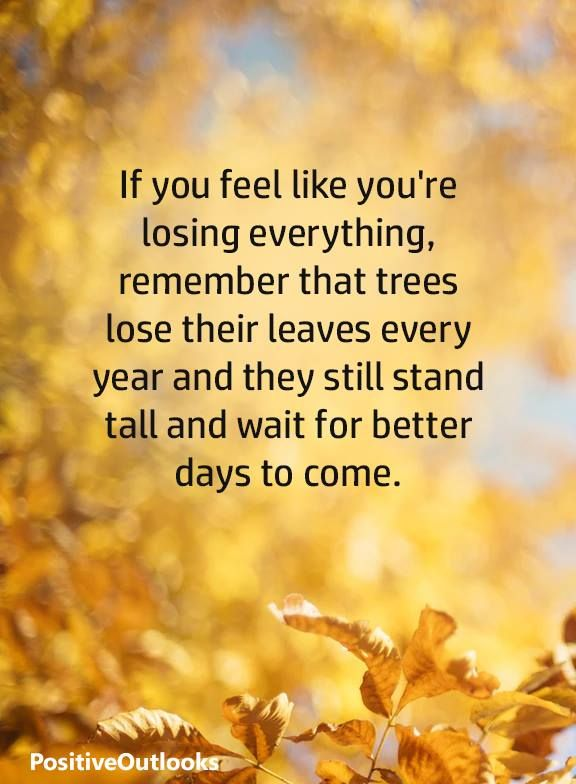 From Positive Outlooks Stand Tall And Wait For Better Days To Come Ref Facebook Better Days Quotes Positive Outlook Quotes How Are You Feeling