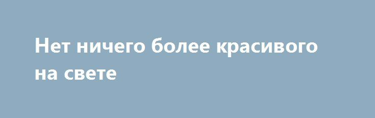 """Нет ничего более красивого на свете http://holidayes.ru/pozdravlenia/s-dnem-svyatogo-valentina/183-net-nichego-bolee-krasivogo-na-svete.html  Нет ничего более красивого на свете, чем твоя улыбка! И нет ничего более приятного, чем в очередной раз повторять """"Я тебя люблю""""..."""