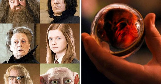 There Are Over 700 Harry Potter Characters, And I'll Be