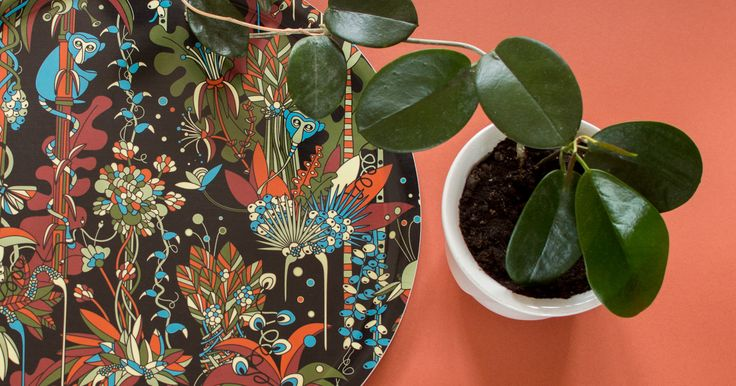 Plattform Studio | Tropical Collection Print, pattern and product design