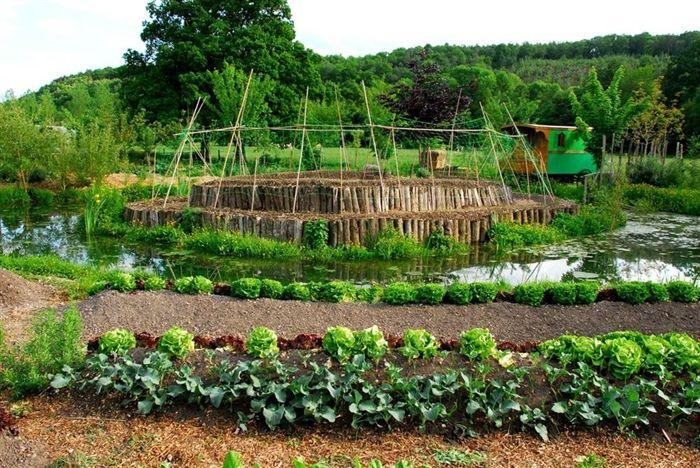 Gagner de l'argent, sans polluer ni exploiter la terre grâce à la permaculture…