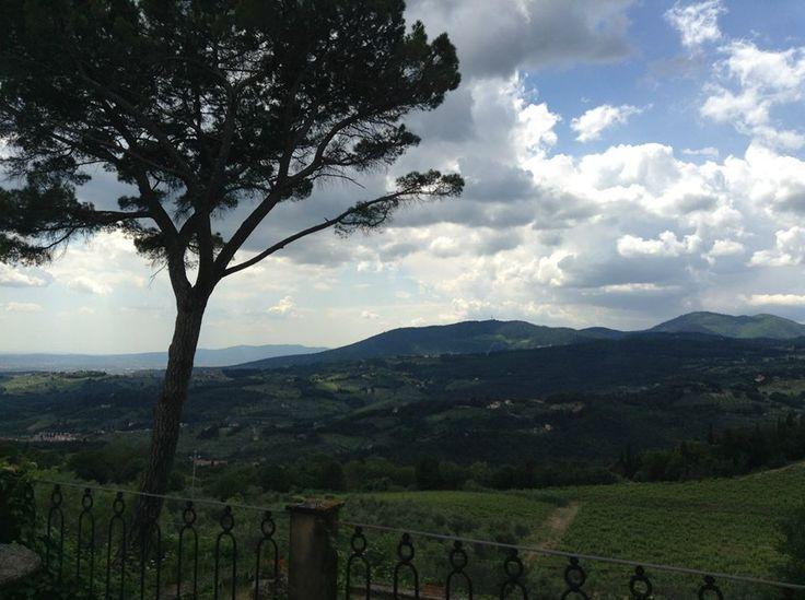 http://dreameat.it/it/produttore/fattoria-montereggi-borsini