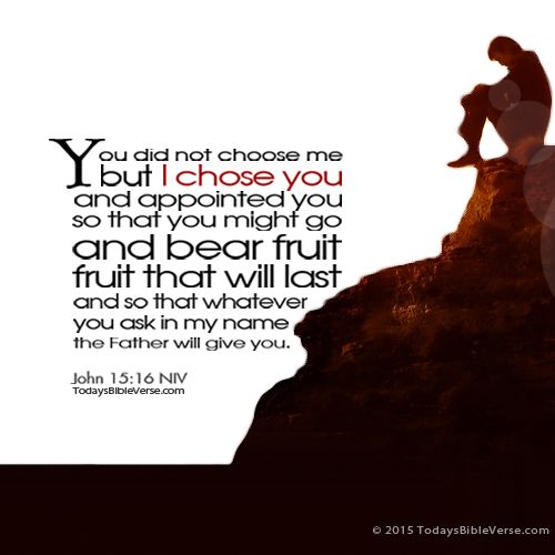 You did not choose me but I chose you and appointed you so that you might go and bear fruit, fruit that will last and so that whatever you ask in my name the Father will give you. John 15:16 NIV