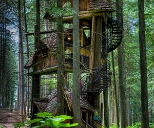 The tallest tree house in British Columbia. the Enchanted Forest, Revelstoke, Canada
