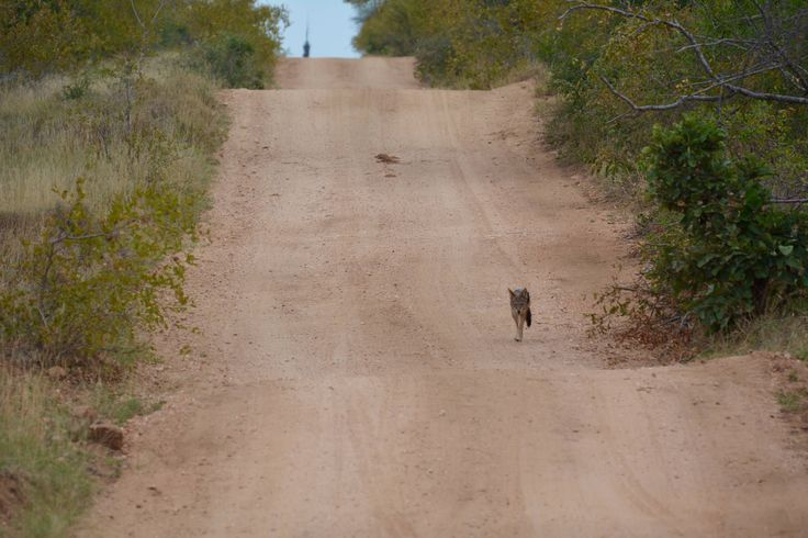 https://flic.kr/p/uZ8epy | BOlli.BoTravel.SA | mit #DriftersAdventures und DerTour in KwaZulu Natal