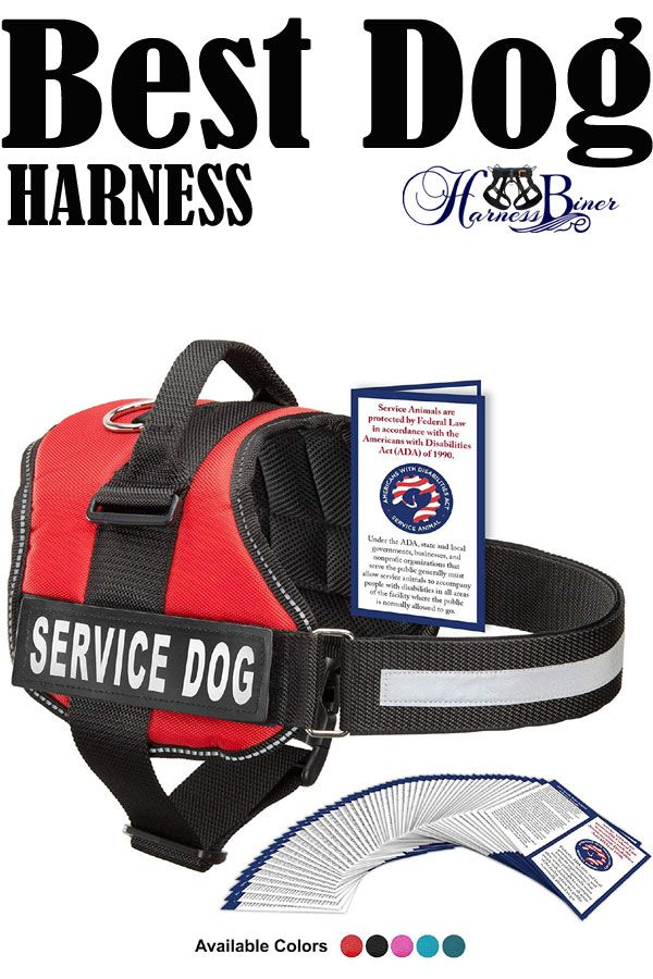Best Dog Harness Industrial Puppy Service Dog Vest With Hook And