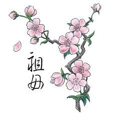 Cherry Blossoms & Japanese writing