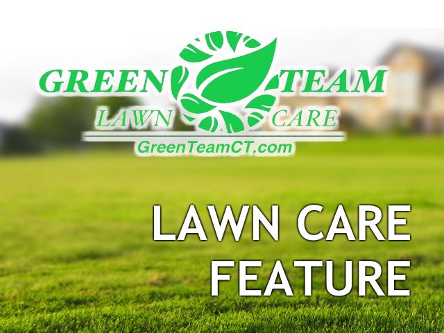 Our Current lawn Care Maintenance feature is located in the heart of Clinton, on Cow Hill Road. The road us locals use to avoid route one between Madison and the outlets, contains some Clinton's best green landscapes in CT. The post Lawn Care Service Clinton CT Featured Yard appeared first on Green Team CT Lawn Care Services. Mowing, Seeding, Leaf Removal, Insect Control, Yard Maintenance Madison, Old Saybrook Lawn Company.