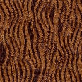 Textures Texture seamless | Faux fake fur animal texture seamless 09580 | Textures - MATERIALS - FUR ANIMAL | Sketchuptexture