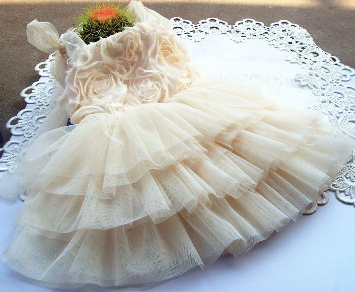 Pretty Abby Dress only $28.95  https://www.facebook.com/LuluLovesLace