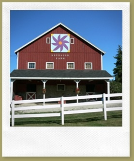 Quilt Patterns On Wisconsin Barns : 548 best images about barn quilt blocks on Pinterest Tennessee, Barn quilt patterns and Red barns