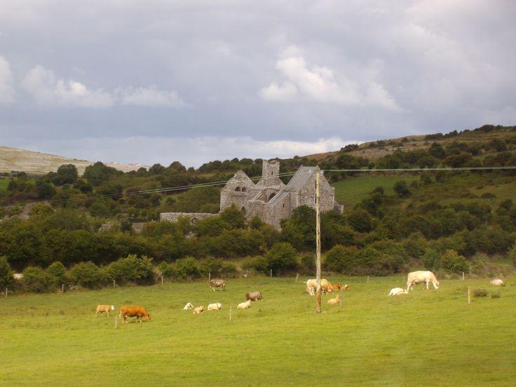 #Leggende #irlandesi: Il mandriano e la mucca rubata #irlanda #irlandesidentro  http://italish.eu/news/leggende-irlandesi-il-mandriano-e-la-mucca-rubata/