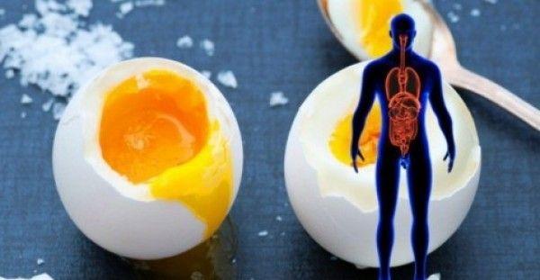 Να τι συμβαίνει στο Σώμα σας εάν τρώτε Αυγά κάθε Μέρα για ένα Μήνα!