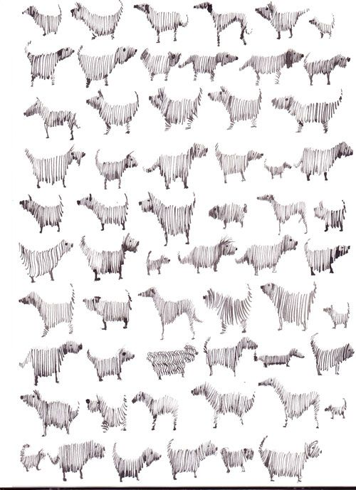 Multi Dog, Pen and Ink   Sally Muir