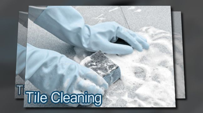 Carpet Cleaning In Paterson Nj 973 933 6852 Upholstery Cleaners