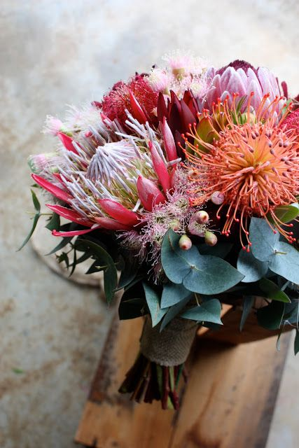King Protea, Pincushion, Flowering Gum February Wedding Bouquet by Swallows Nest Farm