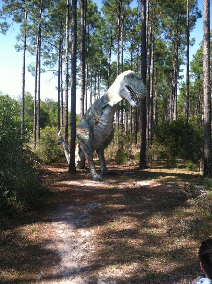 These 10 Very Strange Things In Alabama Will Make You Stop And Look Twice – At Least!!---5. Dinosaurs in the Woods - Elberta, AL