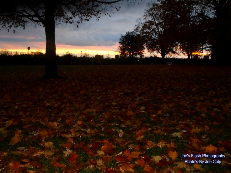 The aftermath of the Heavy rains and the calm before more to come along with the winds October 29, 2015 outside Loyalist college Belleville Ontario