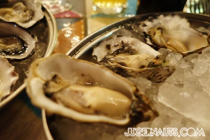 OYSTERS!  Morrisons Oyster Festival August | Sydney