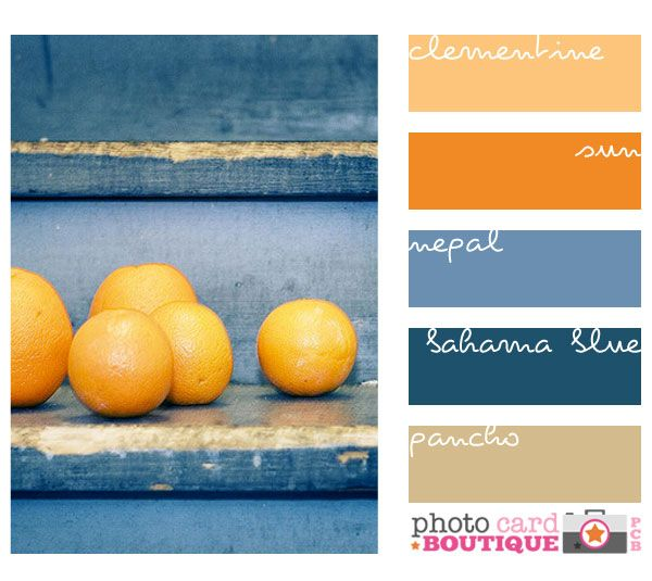 Blue And Orange Random Pinterest Orange Orange Color And Color Schemes
