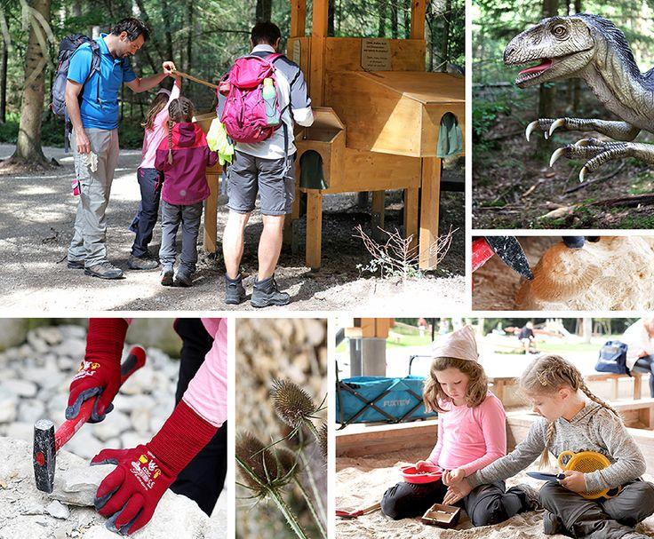 Dinosaurier Park im Altmühltal - Auf den Spuren von Brachiosaurus, Diploducus und T.rex! Ein Erlebnispfad inklusive Mitmach-Stationen für die ganze Familie!