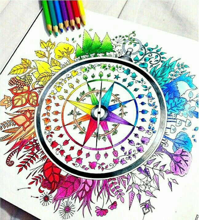 Johanna Basford Adult Coloring Books Color Wheels Colored Pencils Secret Garden Colouring Wheel Art Compass Enchanted