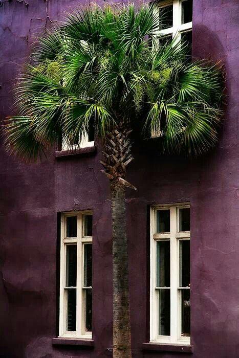 Off purple wall