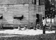 The Case for Reparations - The Atlantic Slaves in South Carolina prepare cotton for the gin in 1862. (Timothy H. O'sullivan/Library of Congress)