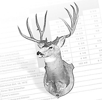 World Record Typical Mule Deer -  226 4/8 B&C