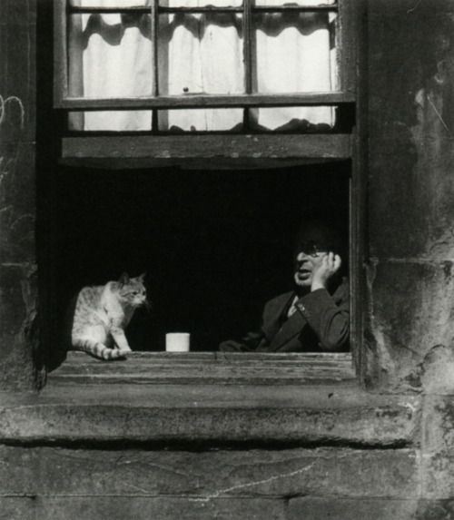 Bill Brandt The Gorbals, 1948 ~ i'd like to think these two were deep in discussion. You can have some excellent chats with pets, mainly cos they don't tend to talk back ;D