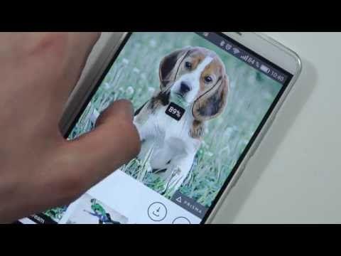 Aplikace Prisma: Fotomrvítko z iOS konečně pro Android (video) - https://www.svetandroida.cz/aplikace-prisma-video-201607?utm_source=PN&utm_medium=Svet+Androida&utm_campaign=SNAP%2Bfrom%2BSv%C4%9Bt+Androida