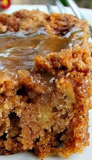 Best Apple Cake - with a hot caramel sauce as a topping. Mmmm..