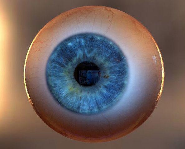 """Интересный интерактивный сайт «3D глаз» начал работу.   На первый взгляд, всё просто: объемное изображение глаза. Но там ещё и неограниченные возможности изменения его внешнего отображения, масса интересных """"фишек"""". Советуем попробовать! Управления позволит преобразовать глаз до неузнаваемости. Меню с большим функционалом на английском языке - но мы уверены, что вы справитесь http://www.vill.ee/eye/"""