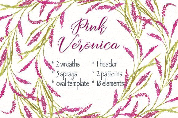 Watercolor bundle: pink Veronica by Lolly's Lane Shoppe on @creativemarket